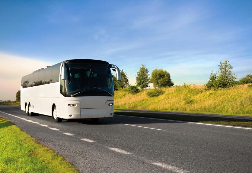 Busreisen  Assisi