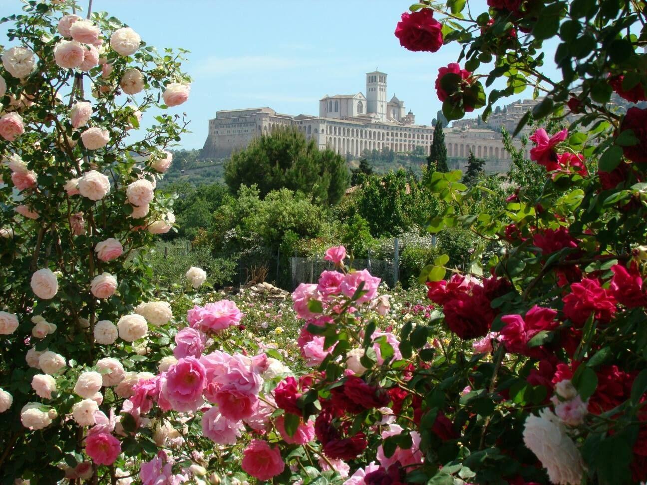 Günstigstes Hotel Assisi